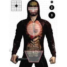 Alvo para Tiro Órgãos - Super Alvos - 10 Unidades